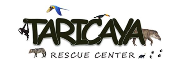 Intervention au Centro de Rescate Taricaya