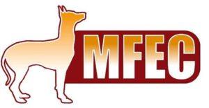 MFEC-logo-300×156