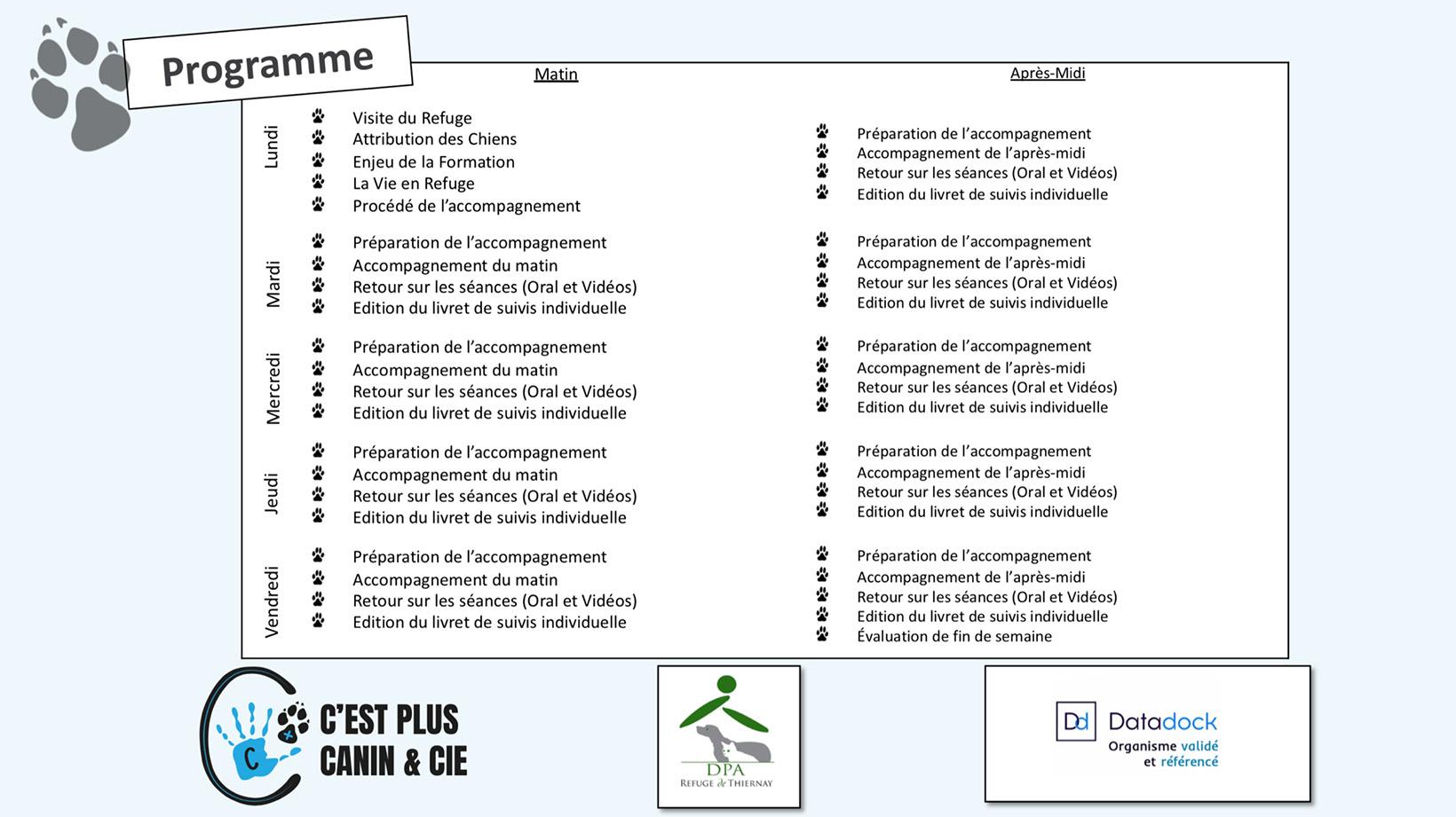 Accompagnement Chien de Refuge Programme-web