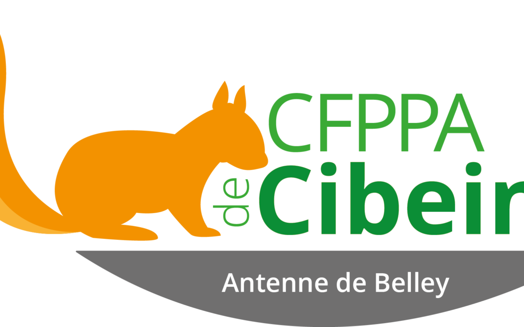 BP Educateur Canin – Education