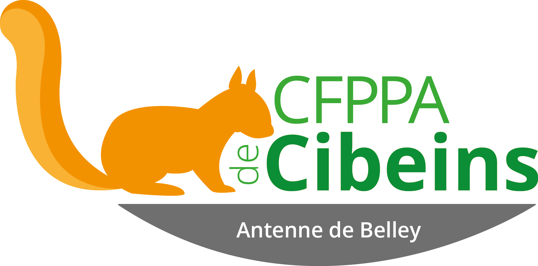 Formation BP Educateur Canin
