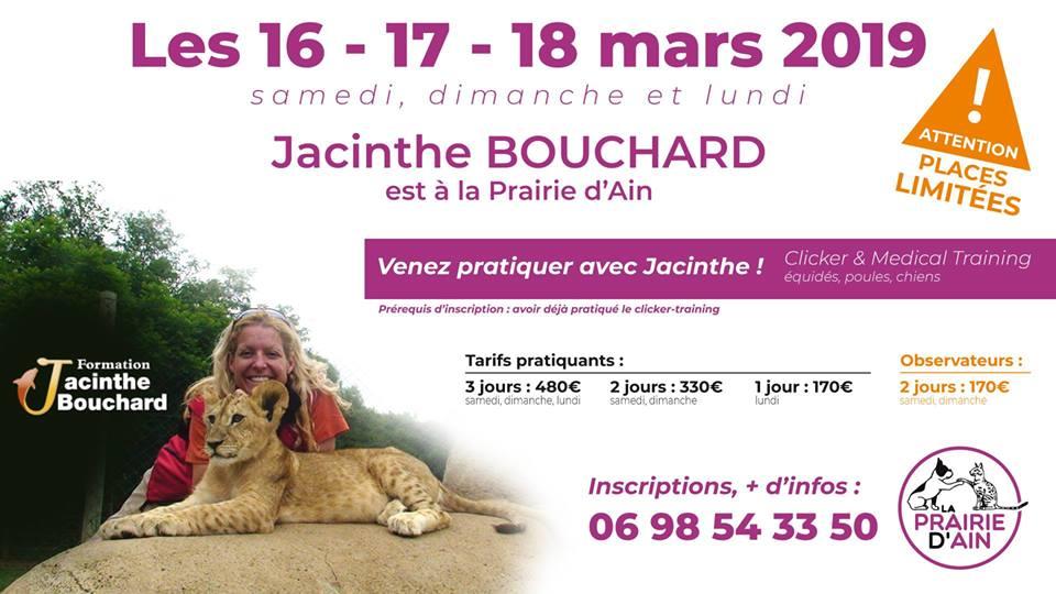 Jacinthe Bouchard